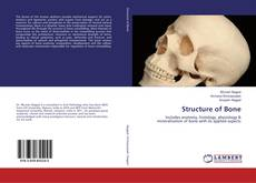 Bookcover of Structure of Bone