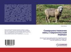 Совершенствование овец ставропольской породы的封面