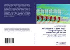 Phlebotominae sand flies -Morphological and Molecular approaches kitap kapağı