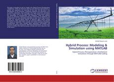 Buchcover von Hybrid Process: Modeling & Simulation using MATLAB