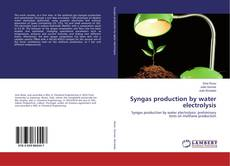 Bookcover of Syngas production by water electrolysis