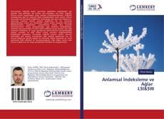 Обложка Anlamsal İndeksleme ve Ağlar LSI&SW