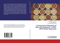 Copertina di Comparative Mapping of Rice and Sorghum : A EST-RFLP Based Approach