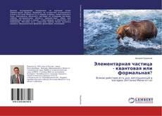 Bookcover of Элементарная частица - квантовая или формальная?