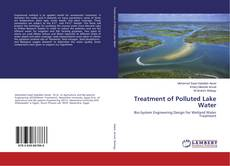 Bookcover of Treatment of Polluted Lake Water