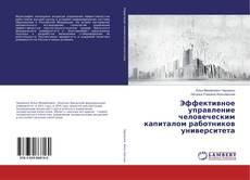 Bookcover of Эффективное управление человеческим капиталом работников университета