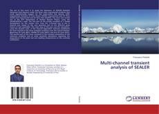 Buchcover von Multi-channel transient analysis of SEALER