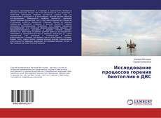 Copertina di Исследование процессов горения биотоплив в ДВС