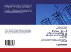 Couverture de Chalcone based sulfonohydrazides as possible antimicrobial agents