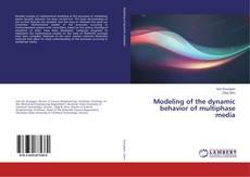 Modeling of the dynamic behavior of multiphase media的封面