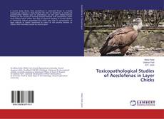 Bookcover of Toxicopathological Studies of Aceclofenac in Layer Chicks