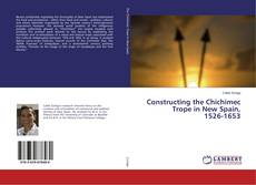 Constructing the Chichimec Trope in New Spain, 1526-1653的封面