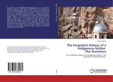 Capa do livro de The Forgotten History of a Indigenous Nation The Arameans