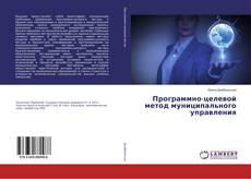 Bookcover of Программно-целевой метод муниципального управления