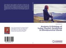 Bookcover of Anatomy & Histology of Turkey Thyroid, Parathyroid & Ultimobranchial Glands