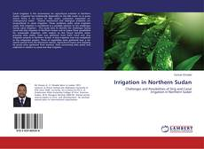 Bookcover of Irrigation in Northern Sudan