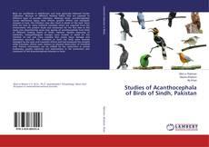 Studies of Acanthocephala of Birds of Sindh, Pakistan的封面