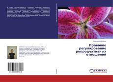 Bookcover of Правовое регулирование репродуктивных отношений