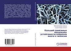 Bookcover of Кальций-зависимые механизмы устойчивости нейронов мозга к гипоксии