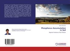 Phosphorus Accumulation in Soil kitap kapağı