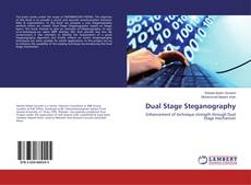 Bookcover of Dual Stage Steganography