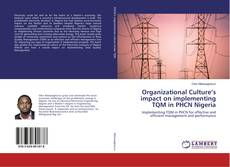 Bookcover of Organizational Culture's impact on implementing TQM in PHCN Nigeria