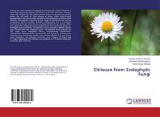 Bookcover of Chitosan From Endophytic Fungi
