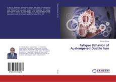 Bookcover of Fatigue Behavior of Austempered Ductile Iron