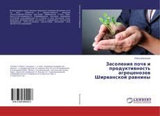 Capa do livro de Засоления почв и продуктивность агроценозов Ширванской равнины