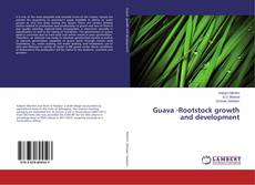 Bookcover of Guava -Rootstock growth and development