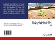 Capa do livro de Efficiency in Indian Rubber Industry: 1991-92 to 2007-08