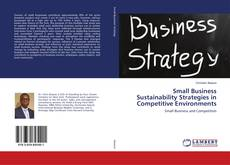 Bookcover of Small Business Sustainability Strategies in Competitive Environments