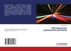 Bookcover of Методология управления рисками