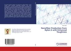 Buchcover von Nanofiber Production from Nylon 6 with Enhanced Toughness