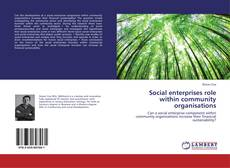 Bookcover of Social enterprises role within community organisations