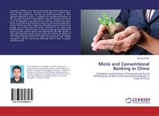 Micro and Conventional Banking in China kitap kapağı