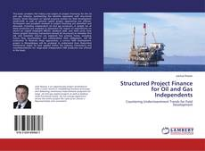 Обложка Structured Project Finance for Oil and Gas Independents