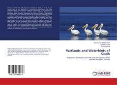 Capa do livro de Wetlands and Waterbirds of Sindh