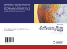 Copertina di What Determines Chinese Foreign Direct Investments in Africa?