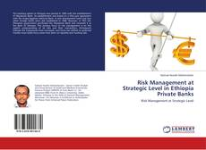 Risk Management at Strategic Level in Ethiopia Private Banks的封面