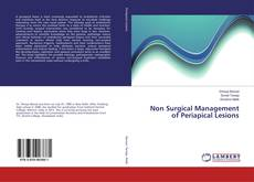 Bookcover of Non Surgical Management of Periapical Lesions