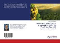 Couverture de Production of Single Cell Protein (SCP) From The Yeast Candida utilis
