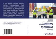 Capa do livro de Управление экономическим потенциалом предприятия