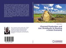 Portada del libro de Charcoal Production and Use: Drawbacks to Rooting a Green Economy