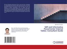 SAP and Informatica PowerCenter Internal Tables: Consultant Guide kitap kapağı