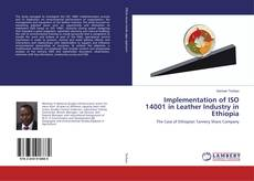 Bookcover of Implementation of ISO 14001 in Leather Industry in Ethiopia