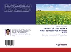 Couverture de Synthesis of Slow Release Water soluble Multi-nutrient Brick