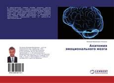 Обложка Анатомия эмоционального мозга