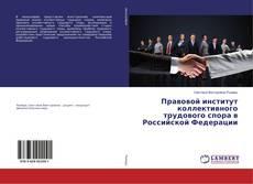 Bookcover of Правовой институт коллективного трудового спора в Российской Федерации