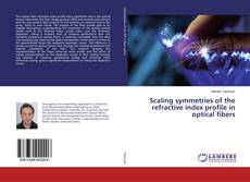 Bookcover of Scaling symmetries of the refractive index profile in optical fibers